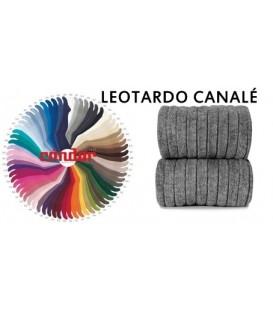 LEOTARDO CONDOR - CANALE